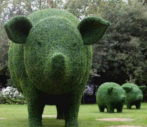 在设计仿真绿雕的时候需要注意哪些要求呢