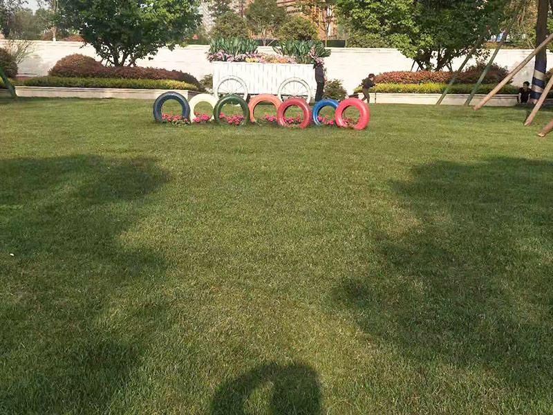 陕西万达广场.南组团绿化养护工程案例