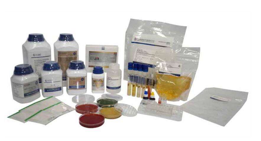 L型細胞高滲鹽增菌培養基