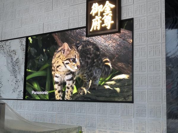 德阳室内P2.5高刷显示屏案例展示