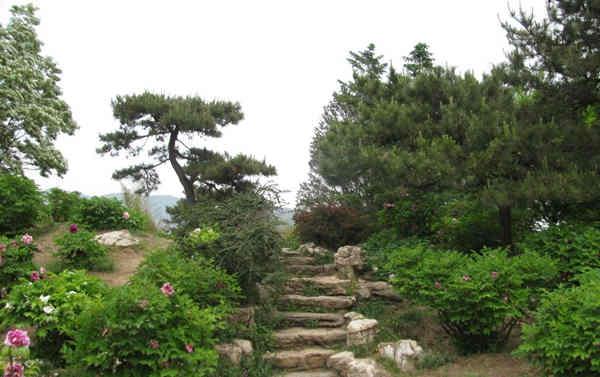 园林景观的重要性