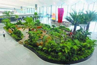 仿真室内植物景观