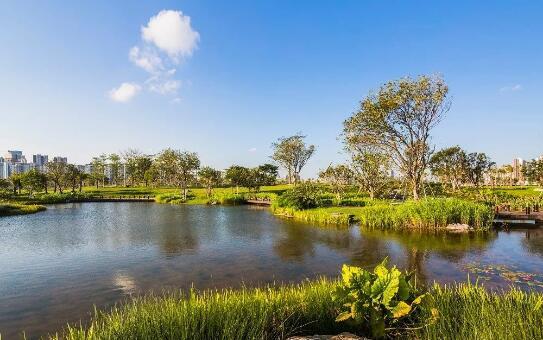 植物群落和水域系统是重组和改造区域环境的重要因素