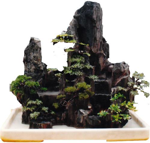 如何打造室内的假山盆景?