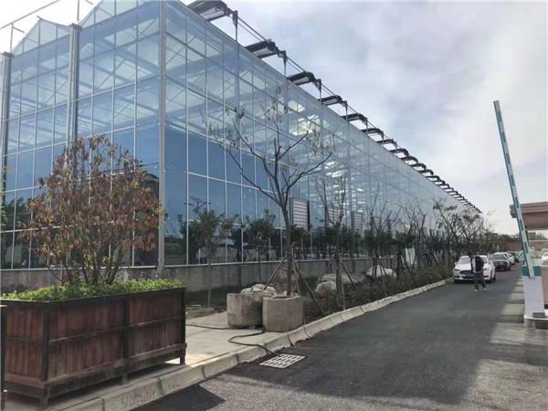 陕西玻璃温室改造