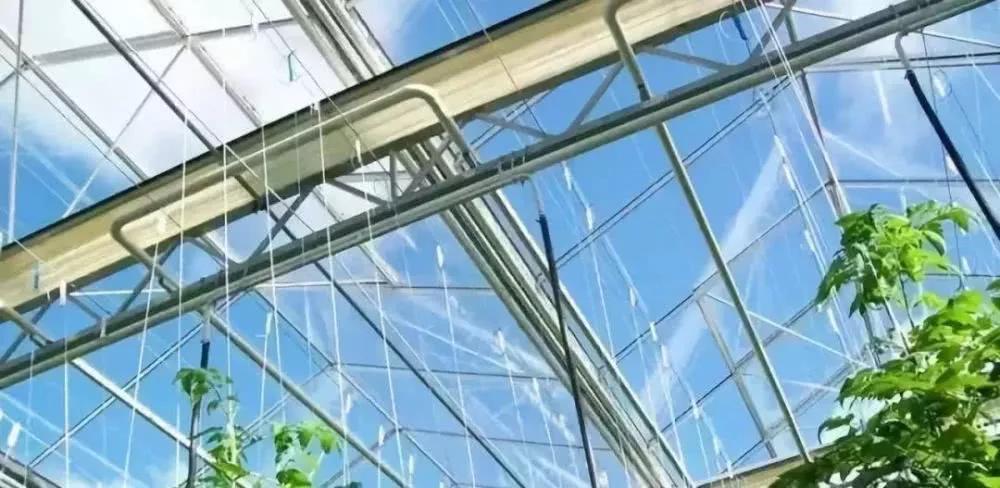 西安温室大棚