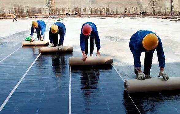 内蒙古防水卷材-沥青防水卷材
