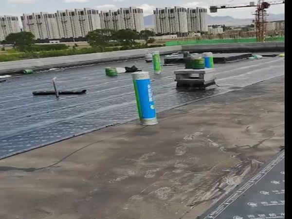 内蒙古防水施工工程