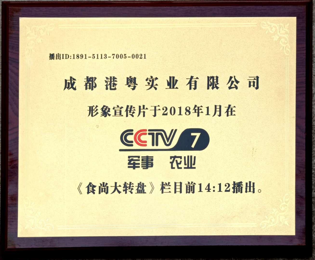 港粤央视宣传片