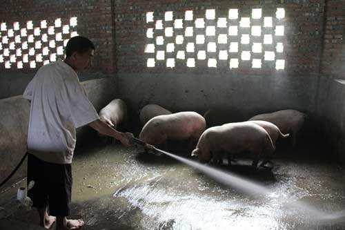 峨眉山市久里镇宋氏养猪厂