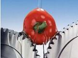 不同品牌的食品级润滑油,该如何正确选择食品级润滑油?