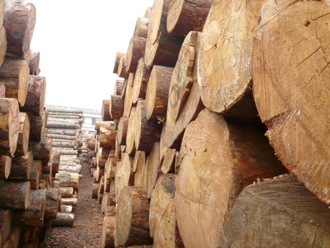 重慶久久香蕉国产线看观看木製品有限公司