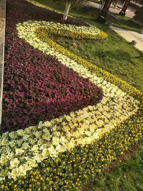草花景观工程