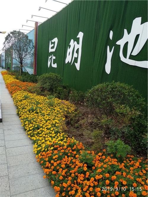西安昆明池花卉布置施工案例
