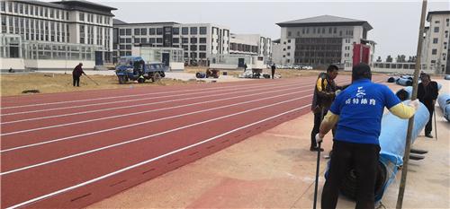 河南塑胶跑道复合型跑道厂家