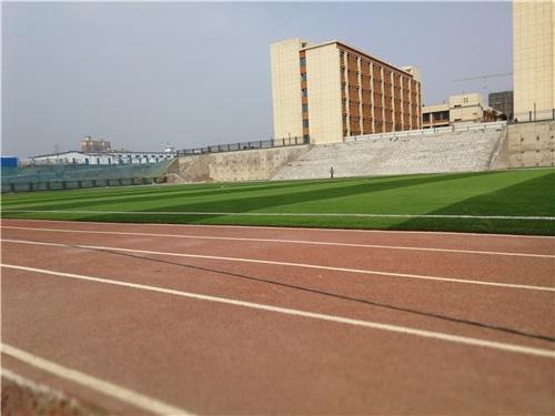 河南塑胶跑道混合型跑道厂家
