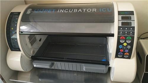 ICU重症监护氧仓动物诊疗仪器
