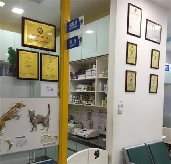 陕西动物诊疗