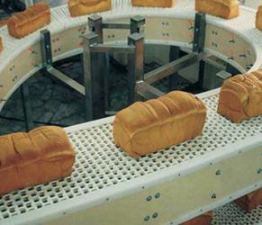 重慶食品鏈板輸送機