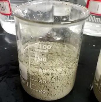 四川污泥脱水剂