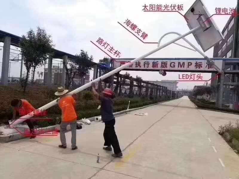 四川太陽能路燈案例