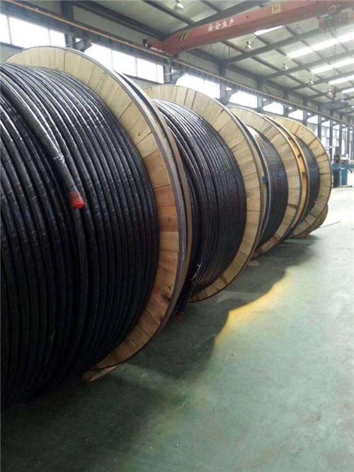 新疆津成电缆价格