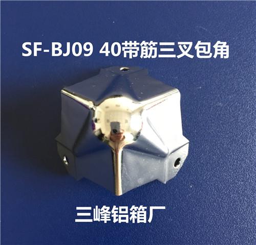 SF-BJ09  40带筋三叉包角