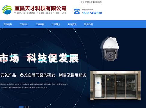 宜昌天才科技有限公司网站