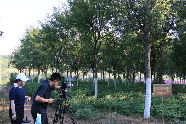 央视《探索与发现》栏目走进杨凌