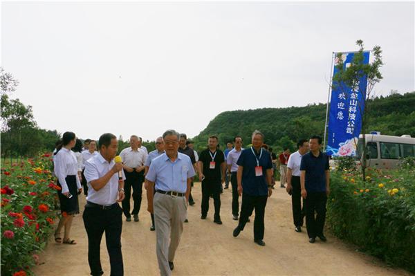 全国油用牡丹产业现场会在杨凌召开