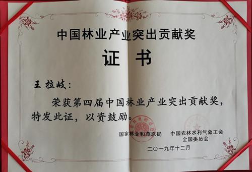 中国bbinbbin突出贡献奖