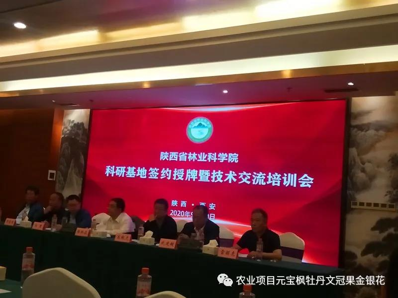 杨凌金山元宝枫基地被授于陕西省林业科学院科研试验示范基地