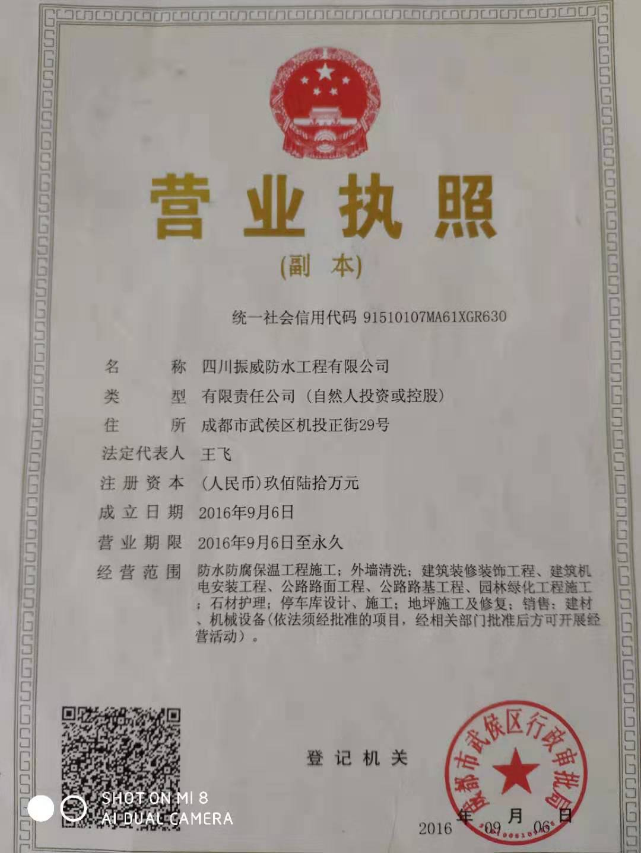 四川振威伟德国际1946英国工程有限公司营业执照