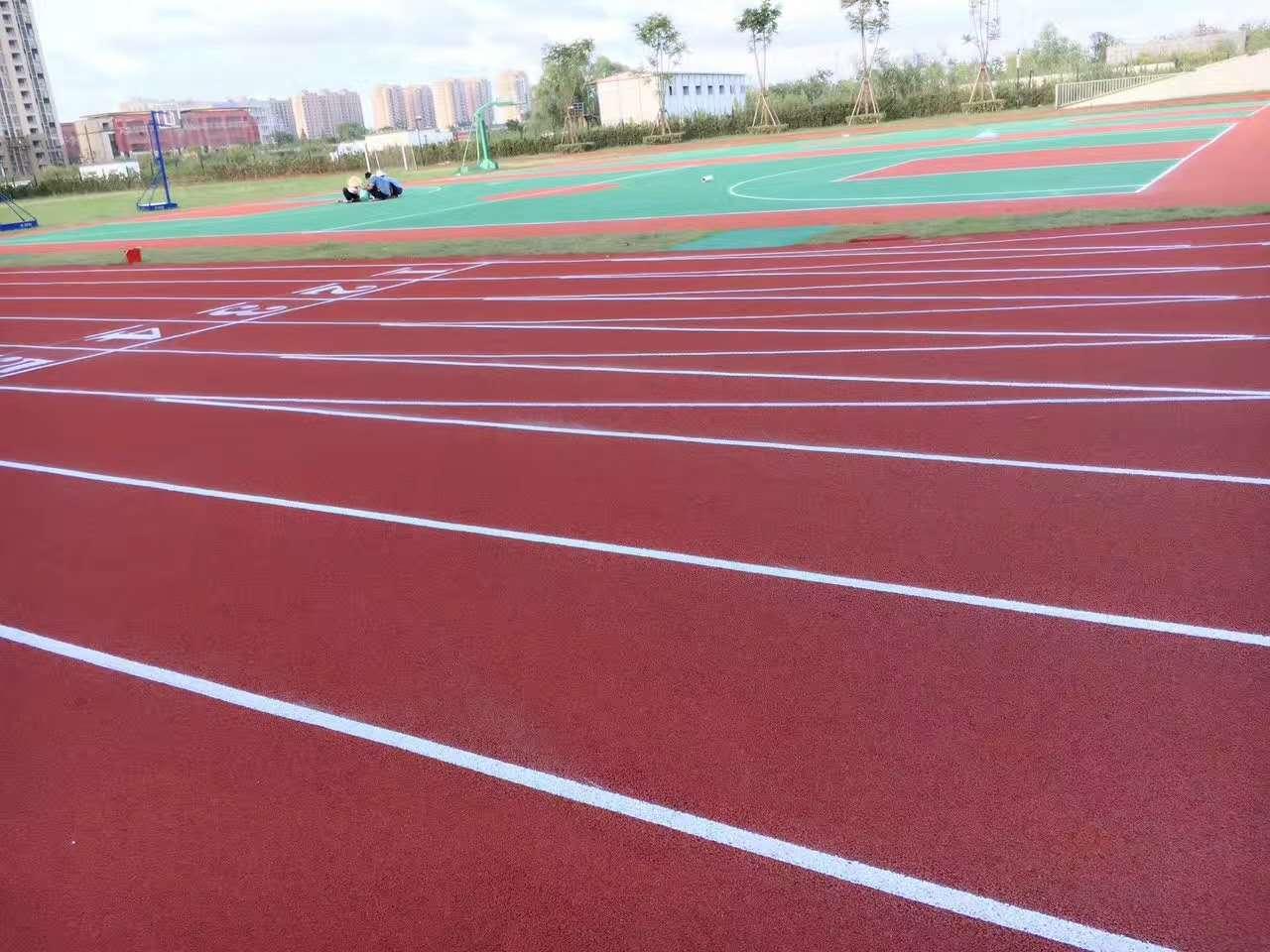 寧波外國語學校新國標塑膠跑道