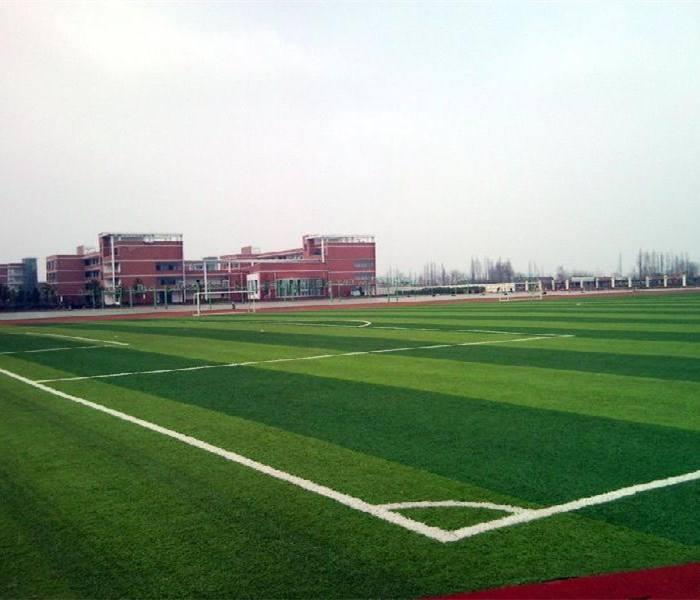 陝西人造草坪