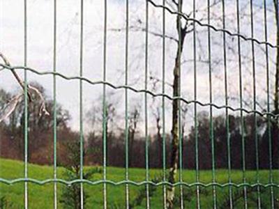 护栏网-公路防护网
