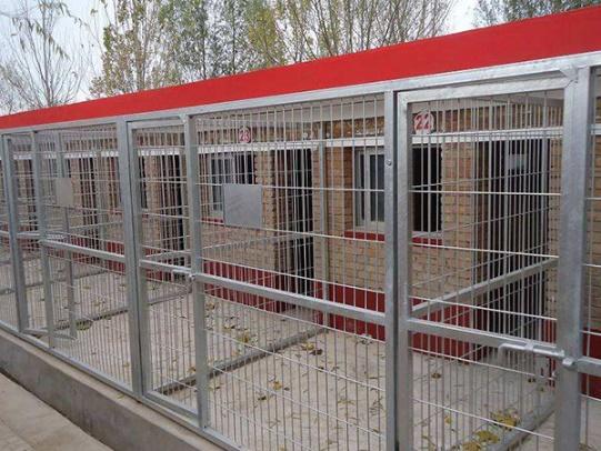 成都护栏网厂家成功案例:养殖用护栏网安装