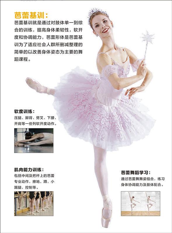 陕西芭蕾舞教学