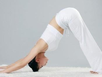 流瑜伽教学