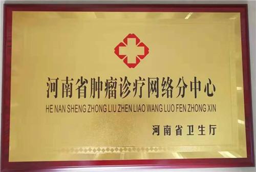 河南省肿瘤诊疗网络分中心