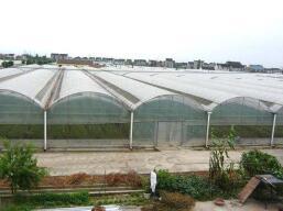 成都玻璃温室大棚案例