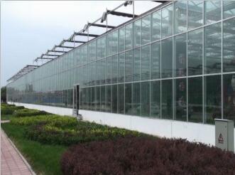 成都玻璃温室大棚