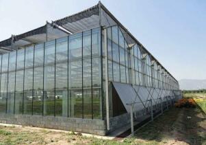 连栋温室大棚的优缺点主要是什么?