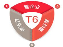 陕西操纵软件-T6