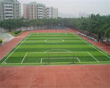 足球场地坪