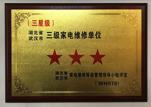湖北省武汉市三级家电维修单