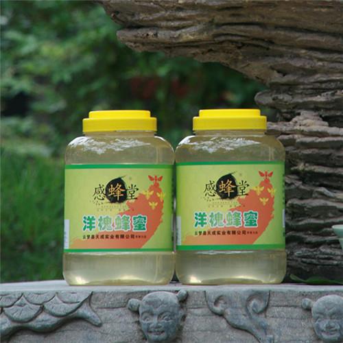 感蜂堂水晶洋槐蜂蜜