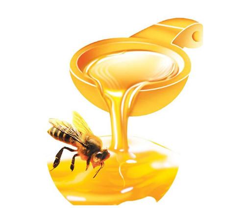 如何识别正宗蜂蜜