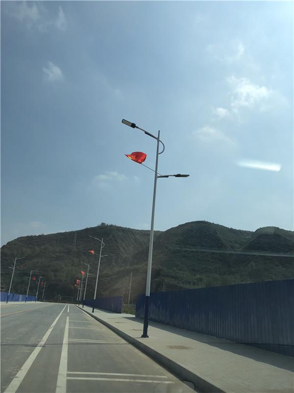 甘肃省庆阳市环县 虎洞镇8米市电 太阳能路灯亮化工程