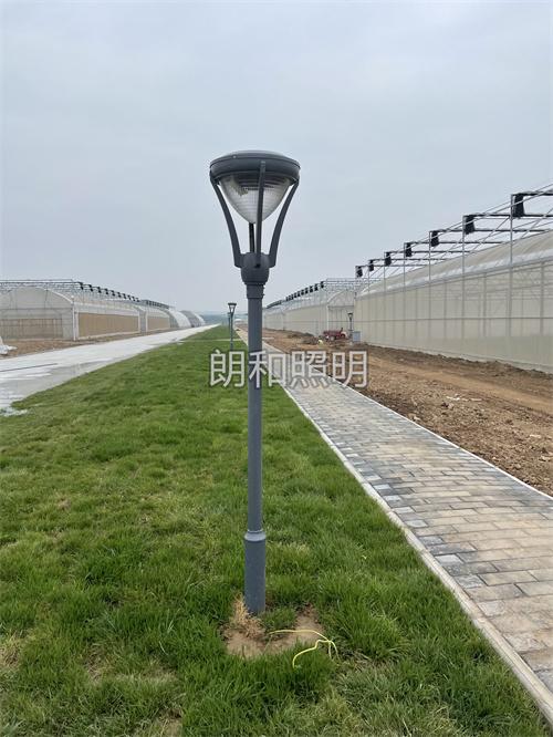 杨陵区先正达种业园区,3米庭院灯及监控设备安装工程